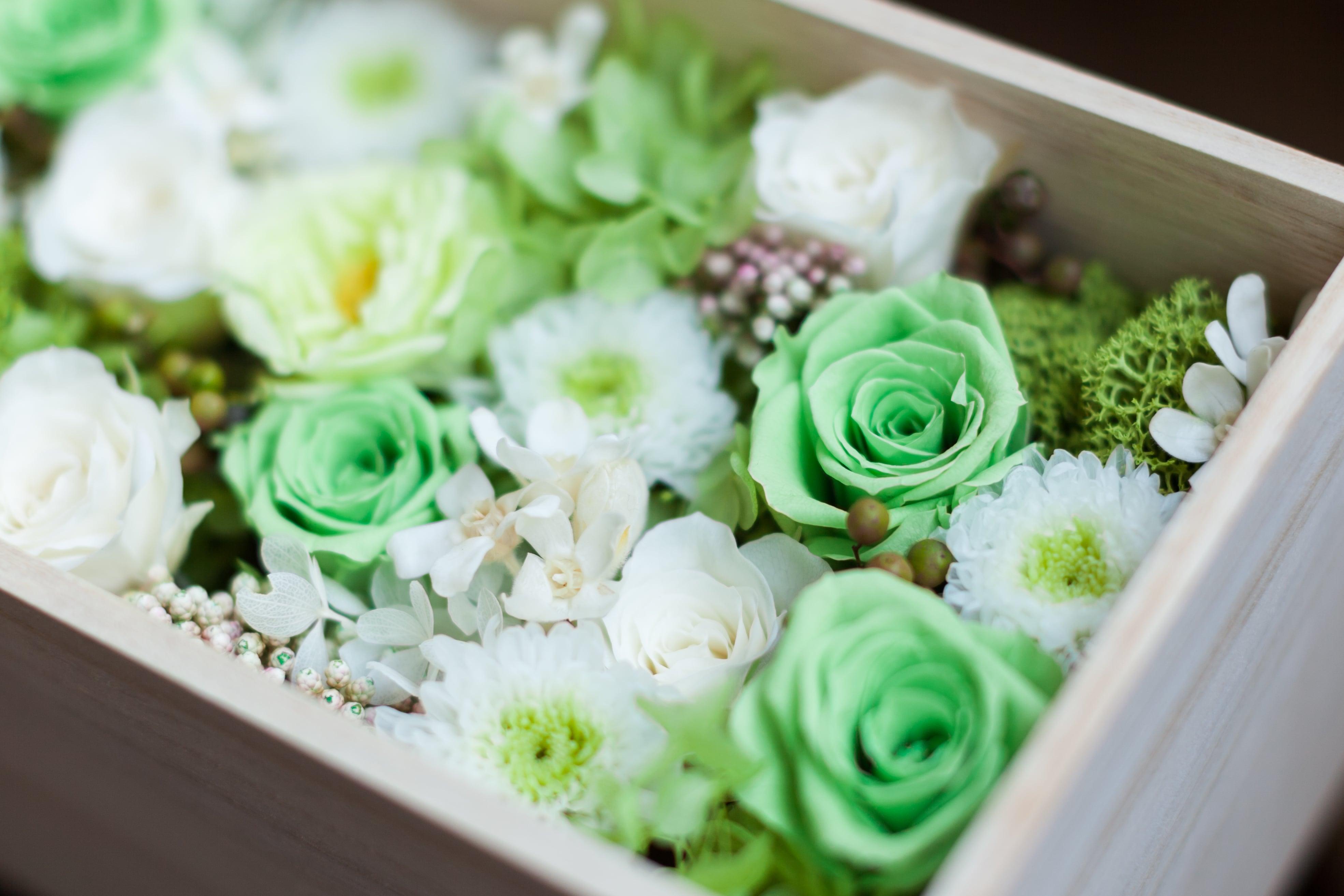 緑のバラのアレンジメント