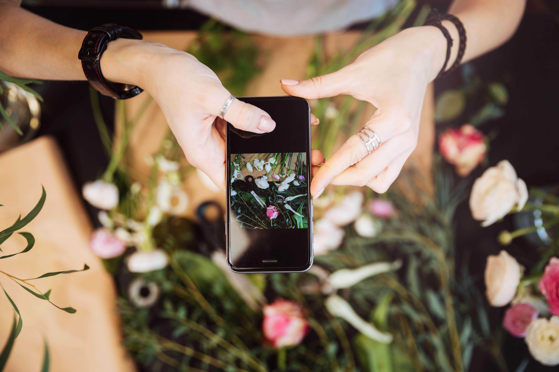 植物の写真撮影をしている様子